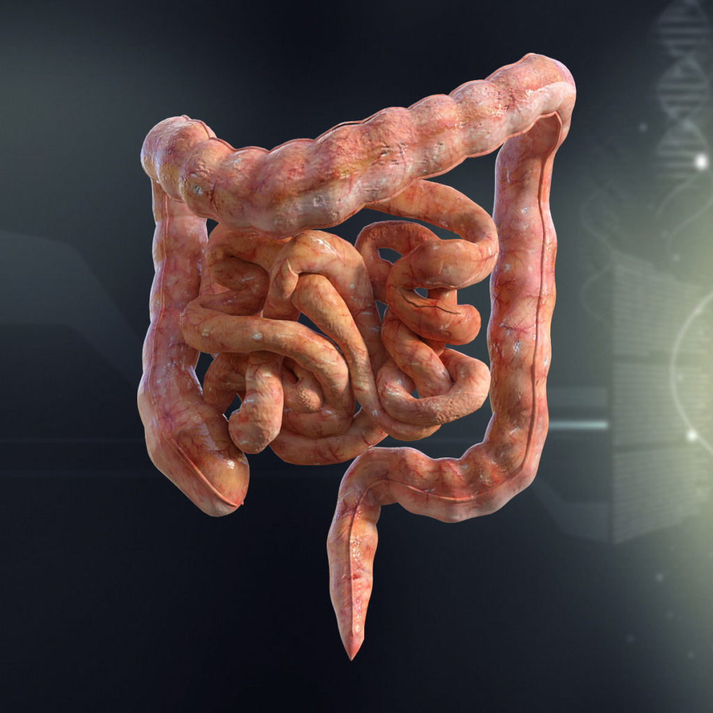 Вздутие толстой кишки: причины и лечение