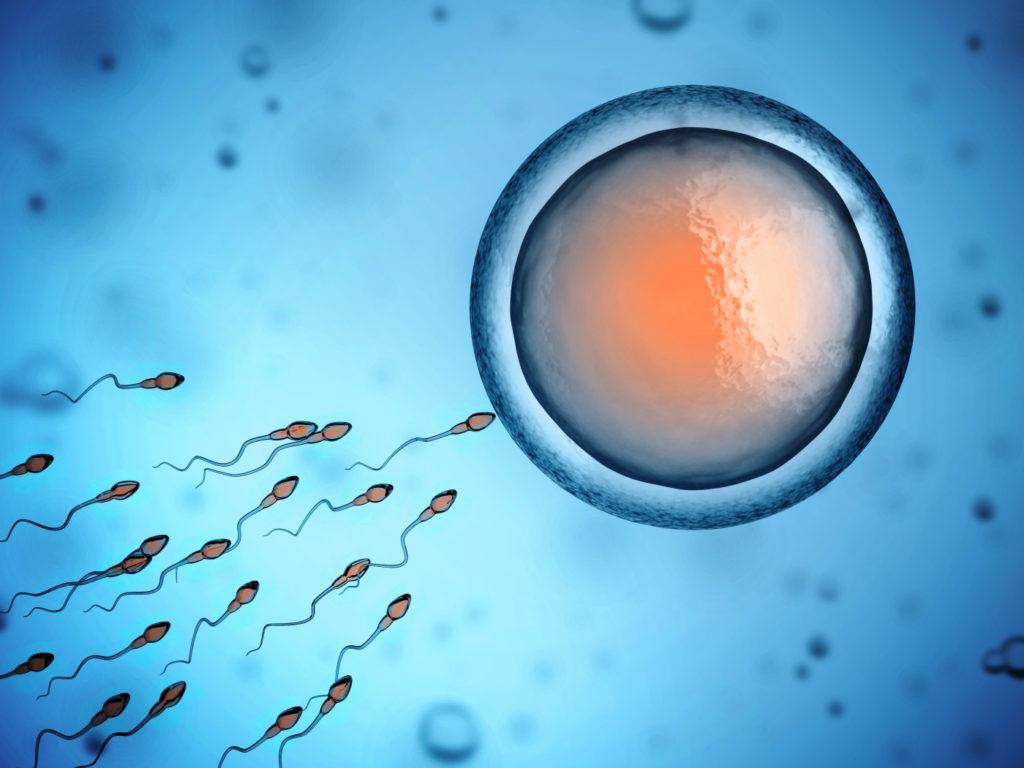 Вздутие живота после переноса эмбрионов: причины и лечение