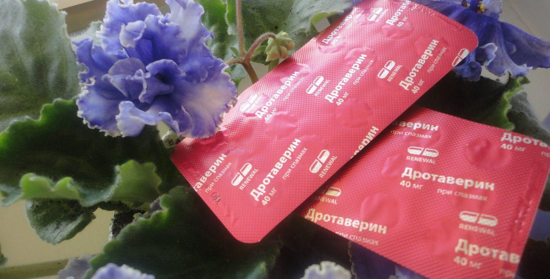 Дротаверин при вздутии живота: инструкция по применению